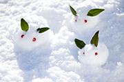 【事務局】12月29日(金)~1月4日(木)は冬季休業をいただきます